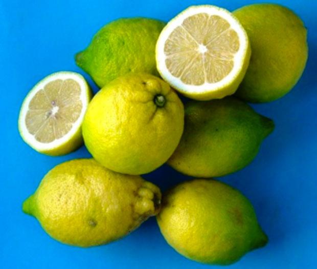 Limoni-Procida_02