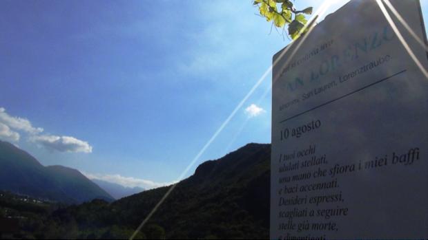 I vitigni ritrovati del Trentino 11