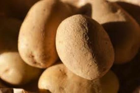 tartufo e patata bianca di pietralunga 3
