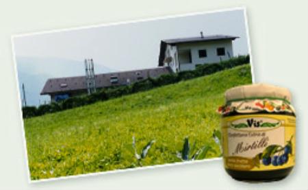 2 spec valtellina - 1 - enoturismo dolce . vino e marmellata 14