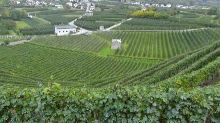 2 spec valtellina - 1 - enoturismo dolce . vino e marmellata 4