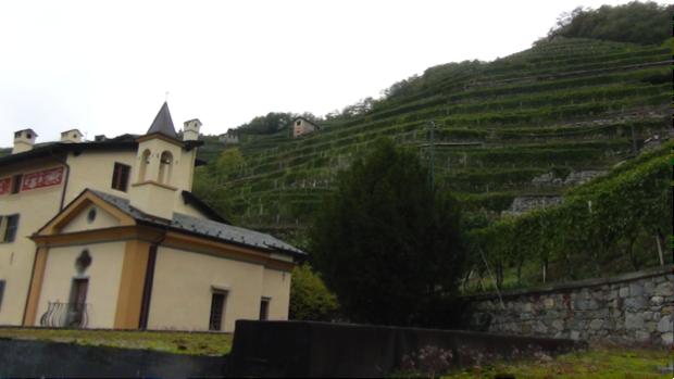 2 spec valtellina - 2 - vino famiglia triacca 2