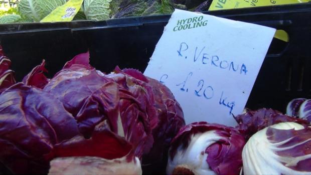 spec Verona - 4 - veronatura mercati di campagna amica 6