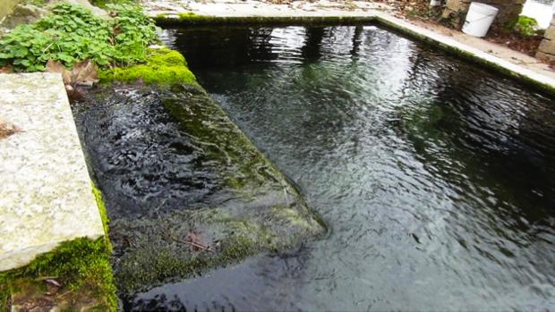 spec prov Verona -6- acqua risorgiva per le risaie 1