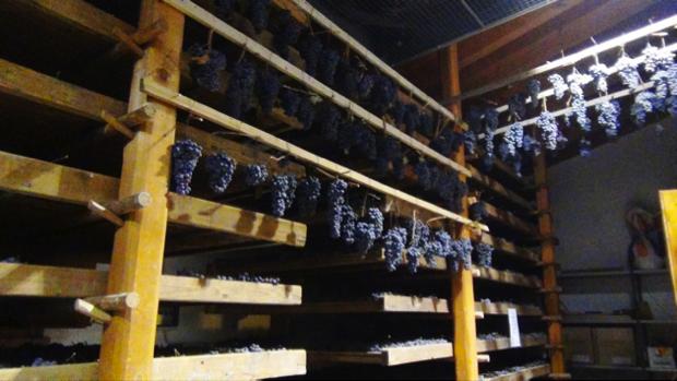 spec prov Verona -8- Contra Malini - vino in Valpolicella 2
