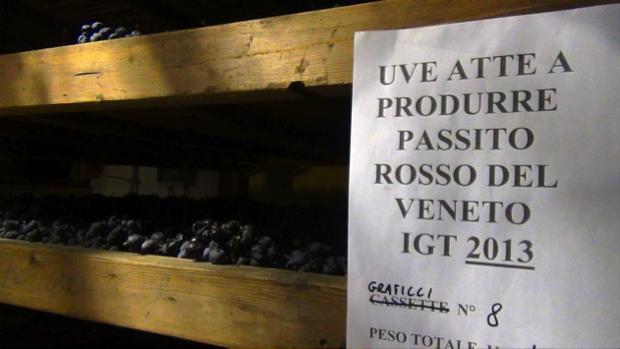 spec prov Verona -8- Contra Malini - vino in Valpolicella 4