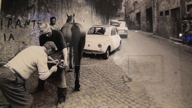 2 spec Roma-3-Museo in Trastevere 5