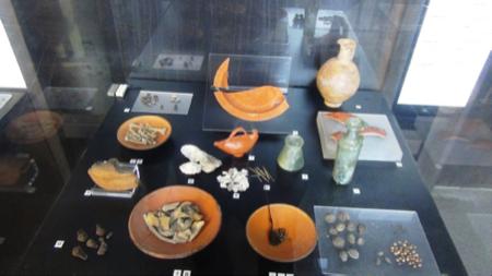 3spec Roma-2-cosa mangiavano i romani al Colosseo 6