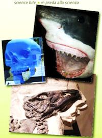 musei scientifici 1