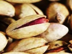pistacchio lavico di bronte 2