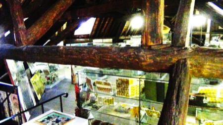 6spec Genova-4-Museo etnomedicina 8
