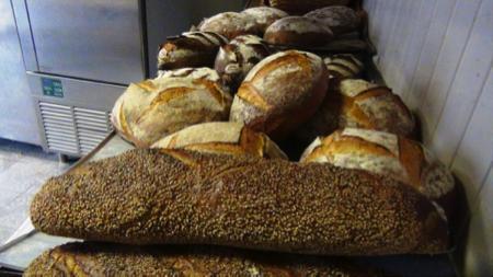 pane del parco agricolo sud di Milano 1