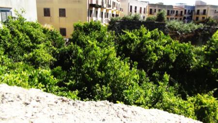 2spec Favignana e Levanzo-2-giardini ipogei 2