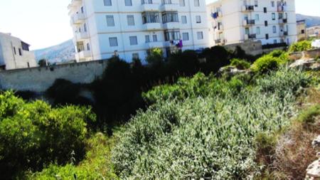 2spec Favignana e Levanzo-2-giardini ipogei 5