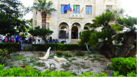 2spec Favignana e Levanzo-4-palazzo Florio 3