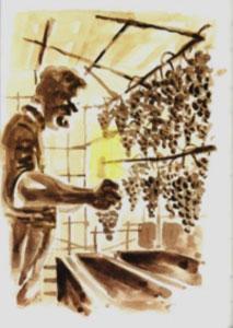 vino-Toscano-vs-paesaggio_04