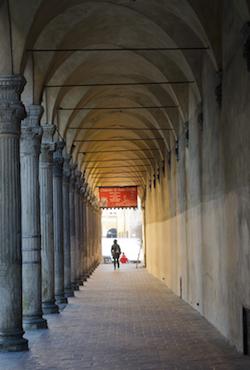 Bologna la dotta 5