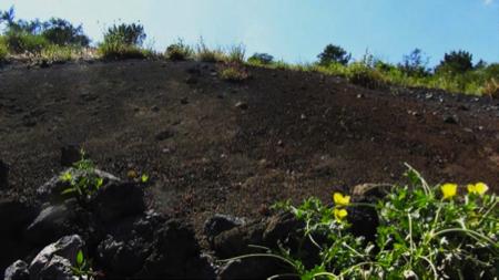 Spec Pompei-3-escursione Vesuvio 5