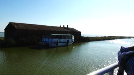 in barca nelle Valli di Comacchio 1