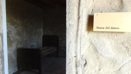 in barca nelle Valli di Comacchio 12