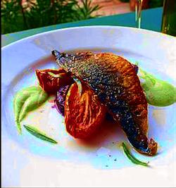 mangiarotti 9-erba brusca cucina biologica 1
