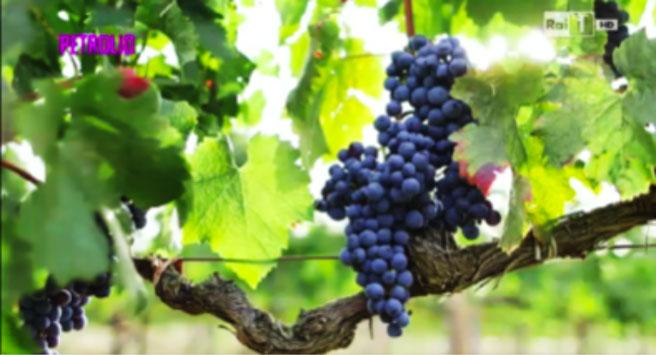 petrolio-vino-italiano