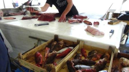 2spec Trapani-4-mercato pesce 6