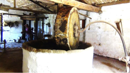spec Custonaci-4-grotta mangiapane 15