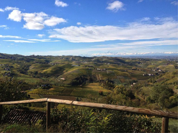 vini di Calosso d Asti 1