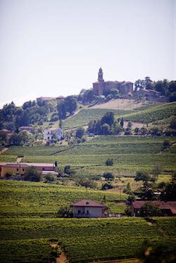 vini di Calosso d Asti 2