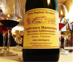 vino trattoria stazione castel d ario 4