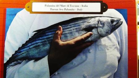 palamita mare toscana - slow food 1