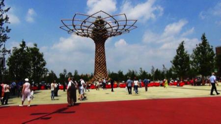 Expo albero della vita