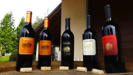 Cascina Ronchetto vini varesini 1