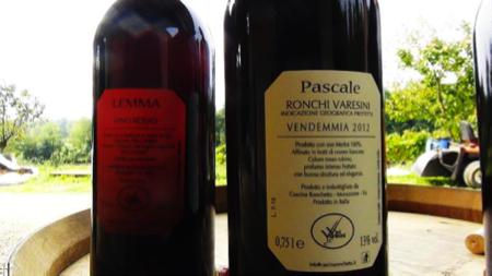 Cascina Ronchetto vini varesini 6