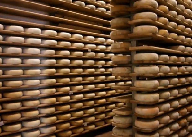 Fattorie Fiandino formaggi 1
