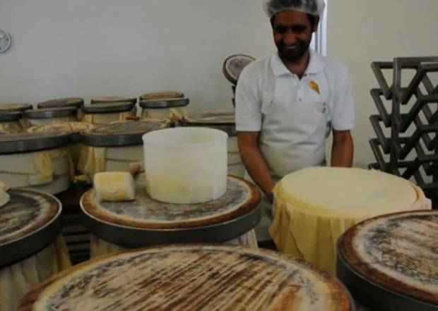 Fattorie Fiandino formaggi 10