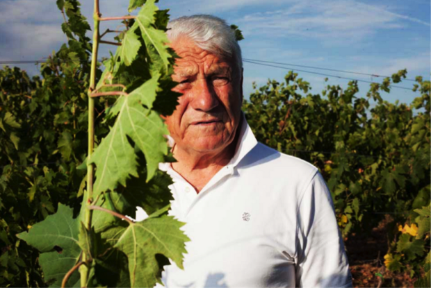 Piandaccoli vini autoctoni toscani 3