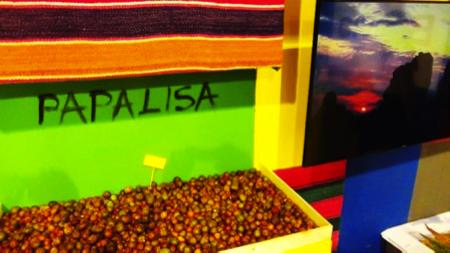 bolivia expo 3