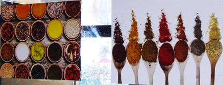 cucine esotiche expo 1