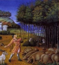 storia e cultura maiale