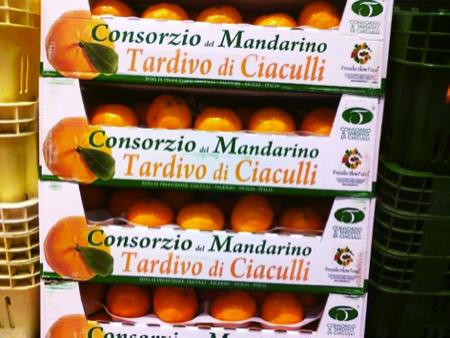 mandarini di slow food 3