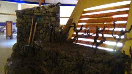 museo lava a viagrande 8