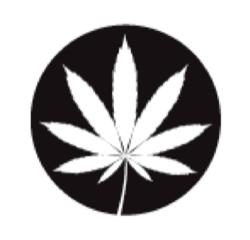 ricette con la cannabis 5