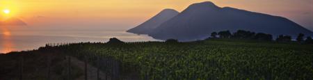 riscatto del corinto nero vitigno lipari 1