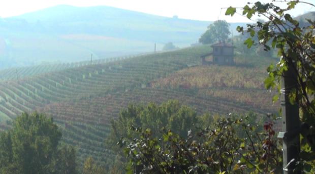 beppe rinaldi arte di fare vino 2