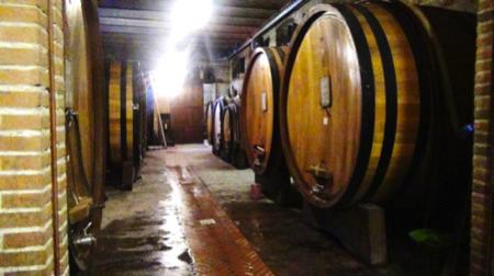 beppe rinaldi arte di fare vino 5