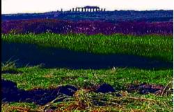 sicilia grani e spremute 3