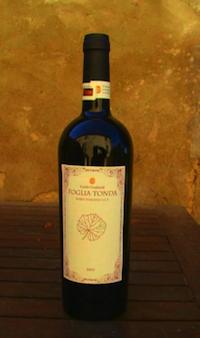 vini archeologici di gualandi 3