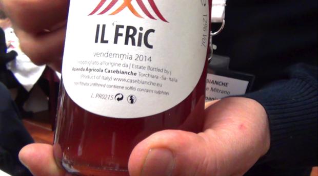 vino bio di Fiano e Aglianico 4
